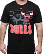 "Chicago Bulls Majestic NBA ""Success"" Fluorescent Logo Men's T-Shirt"