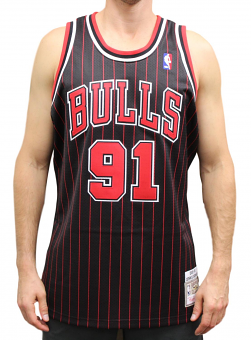Dennis Rodman Chicago Bulls Mitchell & Ness Authentic 1995 Alternate NBA Jersey
