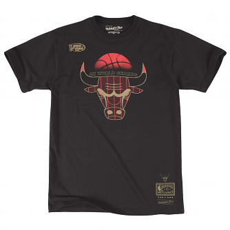 "Chicago Bulls Mitchell & Ness Men's NBA ""6X Champs"" Premium Short Sleeve T-Shirt"