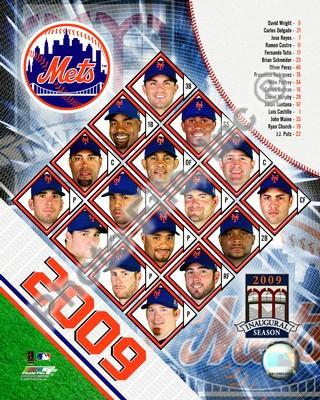 New York Mets 2009 Team Composite 8x10 Photo