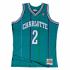 Larry Johnson Charlotte Hornets Mitchell & Ness NBA Throwback Jersey - Teal