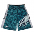 "Philadelphia Eagles NFL ""Big Logo"" Polyester Men's Shorts"