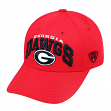 "Georgia Bulldogs Men's NCAA Top of the World ""WHIZ"" Adjustable Hat"