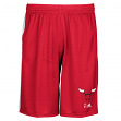 "Chicago Bulls Adidas 2015 NBA ""Tip-Off"" Men's Climalite Mesh Shorts"