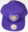 "Orlando City SC MLS Mitchell & Ness ""Team Solid"" Snap Back Hat"