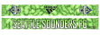 "Seattle Sounders Adidas MLS ""Sublimated"" Polyester Team Scarf"