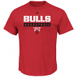 "Chicago Bulls Majestic NBA ""Proven Pastime"" Short Sleeve Men's T-Shirt"