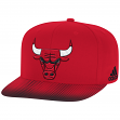 Chicago Bulls Adidas NBA Sublimated Dot Embroidered Snap Back Hat