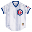 Ryne Sandberg Chicago Cubs Mitchell & Ness Authentic MLB 1987 Pullover Jersey