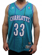 "Alonzo Mourning Charlotte Hornets Adidas NBA Throwback ""Zo"" Swingman Jersey"