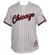 Chicago Bulls Mitchell & Ness Men's White Pinstriped Mesh Baseball Jersey Shirt