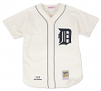 Al Kaline Detroit Tigers Mitchell & Ness MLB Authentic 1968 Jersey - SMALL/36