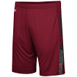 "South Carolina Gamecocks NCAA ""Perfect Season"" Men's Training Shorts"