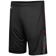 "Texas A&M Aggies NCAA ""Perfect Season"" Men's Training Shorts"