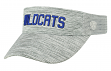 "Kentucky Wildcats NCAA Top of the World ""Ballholla"" Mesh Back Visor"