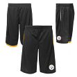"Pittsburgh Steelers Youth NFL ""Vector"" Performance Mesh Shorts"