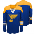 "St. Louis Blues NHL ""Perennial"" Youth Long Sleeve Hockey Crew Shirt"
