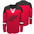 "Detroit Red Wings NHL ""Perennial"" Youth Long Sleeve Hockey Crew Shirt"