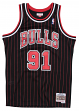 Dennis Rodman Chicago Bulls NBA Mitchell & Ness Youth Throwback Swingman Jersey